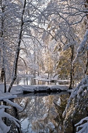 river: Small river covered with snow after storm. New England, USA Stock Photo