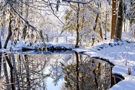Small river covered with snow after storm. New England, USA Reklamní fotografie