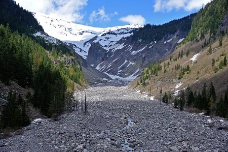 mt rainier: Nisqually River in Mt Rainier National Park