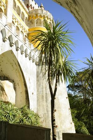 pena: Pena National Palace. Sintra, Portugal
