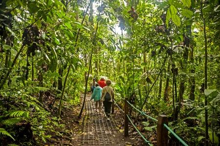 fortuna: La Fortuna, Costa Rica - February 23, 2014: tourists discover the rainforest surrounding the Arenal Volcano