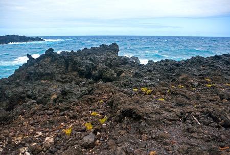 Waianapanapa State Park on Maui island of Hawaii is featuring black lava sand, tidal caves & native plants Stock Photo