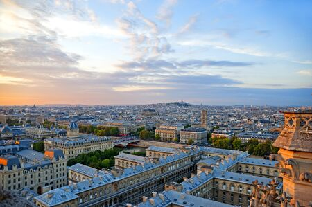 Looking over Paris from the Notre Dame Cathedral