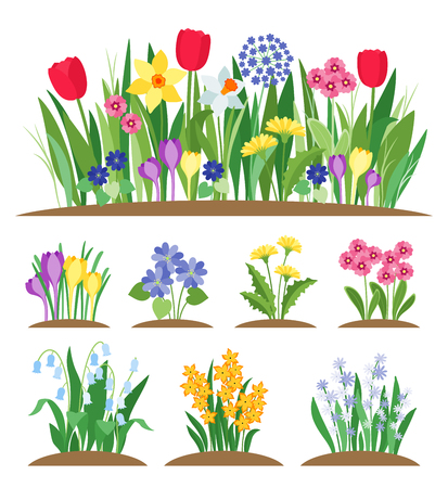 Spring garden flowers. Grass and plant. Early spring flowering vector set 일러스트