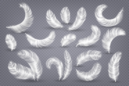 Realistic feathers. Fluffy white goose and swan feather, weightless plume isolated vector set Фото со стока - 126946885