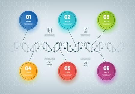 Infografía de ADN. Diagrama de cadena molecular, infografía de pasos médicos, flujo de trabajo empresarial. Concepto de vector abstracto modelo genético Ilustración de vector