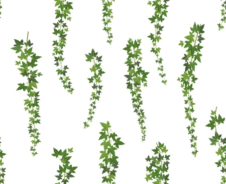 Creeper green ivy. Wall climbing plant hanging from above. Garden decoration ivy vines. Seamless background vector illustration Ilustrace