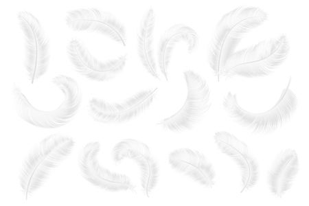 White feathers. Angel, goose or swan realistic feathers. 3d weightless falling plume isolated vector collection set