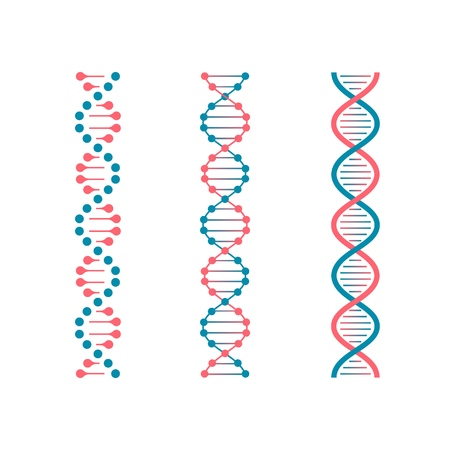 Chemistry code DNA. Double genetic code of human molecule. Biotechnology future vector set