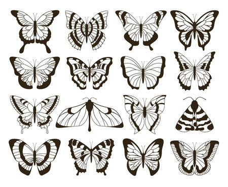 Monochrome butterflies. Black and white drawing, hand drawn tattoo shapes vintage collection. Vector butterfly isolated set 일러스트