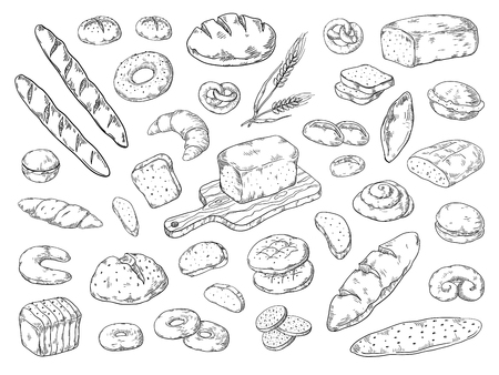 Hand drawn bakery. Doodle bread sketch, wheat flour types of bread, vintage graphic template baking. Vector bakery bagels and cookies Ilustração
