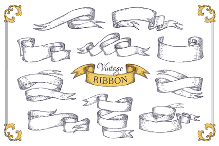 Hand drawn ribbons. Scroll elements for banner posters invitation cards and vintage logo. Vector pretty engraving design elements  イラスト・ベクター素材