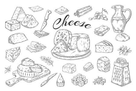 Cheese sketch. Hand drawn milk products, gourmet food slices, cheddar Parmesan brie. Vector breakfast vintage illustration pencil hand drawn  イラスト・ベクター素材