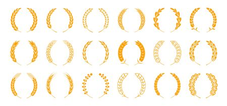 Wheat and rye ears. Wreath spikes and stalks elements for organic food logo and nature emblem. Vector harvest bread and ear isolated set Stock Illustratie