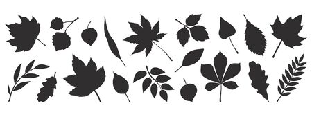 Black autumn leaves. Decorative fall elements isolated on white background. Vector illustration foliage silhouettes for greeting vintage cards and posters Иллюстрация