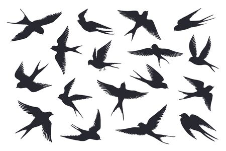 Flying birds silhouette. Flock of swallows, sea gull or marine birds isolated on white background. Vector set illustration of different steps free fly silhouettes feather wings bird Иллюстрация