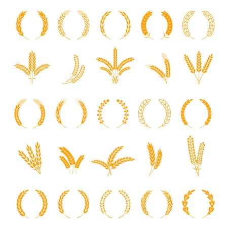 Wheat and rye ears. Harvest barley grain, growth rice stalk. Field cereal icons set. Wreath spikes and stalks vector bordure elements for business signs Иллюстрация