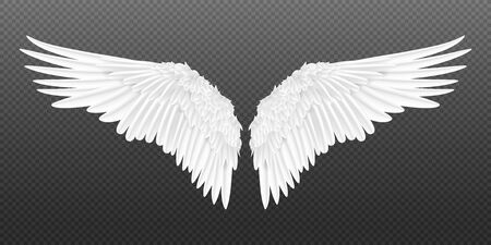 Realistic wings. Pair of white isolated angel style wings with 3D feathers on transparent background. Vector illustration bird wings design Stock Illustratie