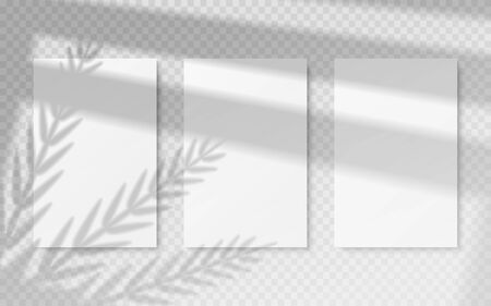Posters with shadow overlay. White blank banners mockup with vector image transparent shadow of tropical leaves and window frame. Shadows effects on wall for natural effects light refracting