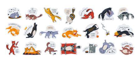 Autocollants de chat. Étiquettes mignonnes pour animaux de compagnie avec des citations de motivation, diverses poses de personnages de dessins animés dessinés à la main. Illustrations vectorielles ensemble de dessin drôle de griffonnage, concept de visage de chaton d'expressions heureuses Vecteurs