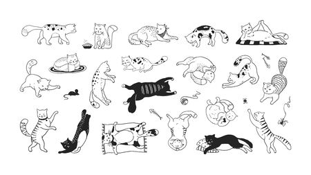 Hand drawn cats. Funny and cute pets, doodle black different kittens and cats sitting lying and playing. Vector collection ink sketch trendy image characters joyful play kitty