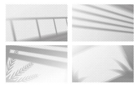 Sombra de ventana realista. Marco de ventana y lamas con hojas tropicales, efecto de luz de ventana. Conjunto de imágenes de sombras transparentes vectoriales, reflejadas en la pared o el piso de la habitación, sobre fondo transparente