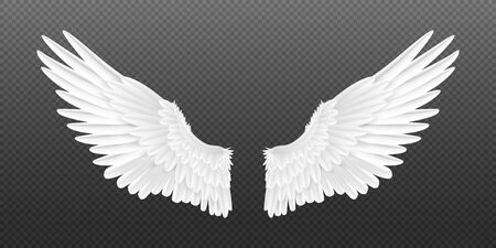 Realistic angel wings. White isolated pair of falcon wings, 3D bird wings design template. Vector concept white cute feathered wing animal on a transparent background 일러스트