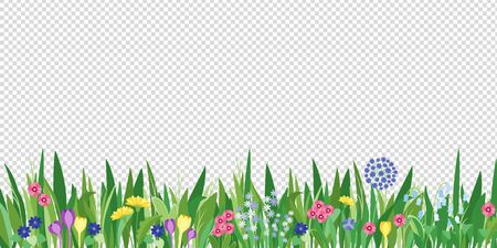 Spring garden grass and flowers border. Cartoon vector flower background. Green elements objects flora on transparent background