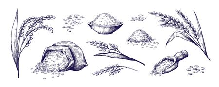 Hand drawn rice. Organic cereal in bag and rice porridge in bowl, sketch doodle set of wild jasmine steamed and basmati rice. Vector outlined illustrations rice plant and grains Stock Illustratie