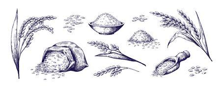 Handgezeichneter Reis. Bio-Müsli in Tasche und Reisbrei in Schüssel, Skizzen-Doodle-Set aus gedämpftem Wildjasmin und Basmatireis. Vektor umrissene Illustrationen Reispflanze und Körner