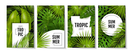Tropic leaves posters. Exotic greenery and banana palm leaves, greeting cards and invitation flyers with monstera plants. Vector illustration background with green foliage, banner or flyer design