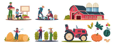 Cartoon eco farming. Agricultural workers doing farming job, cropping and selling organic products. Rural work and organic production vector illustration scenes set