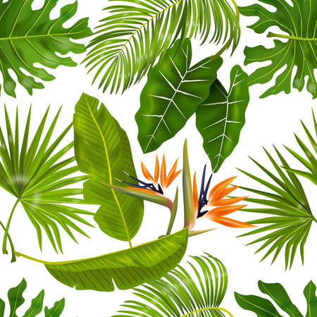 Tropic leaves pattern. Seamless texture with exotic leaves of jungle foliage, monstera and banana palm plants. Vector illustrations greenery pattern with exotic flower