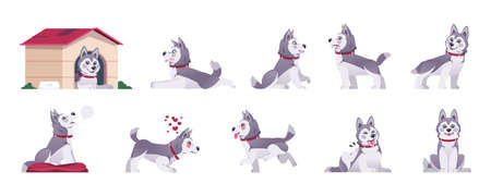 Cartoon dog. Happy flat playful puppy in different poses and doing tricks, cute comic pet with emotions. Vector set illustration of playful funny animal activity
