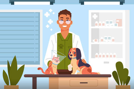 Vet examine. Cartoon veterinary doctor in clinic heals cute cats and dogs, hospital for domestic animals, consulting office interior, vector scene with puppy and kitten healthcare flat illustration