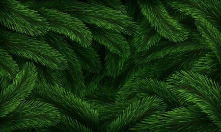 Christmas tree pattern. Realistic fir branches green texture poster, Xmas winter forest closeup background, new year holiday conifer tree branch nature botanical banner vector horizontal illustration
