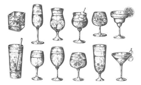 Sketch cocktails. Vector hand drawn glasses with alcoholic drinks, different cold alcohol beverages in engraving style champagne and martini, whiskey with ice, margarita and mojito vector isolated set