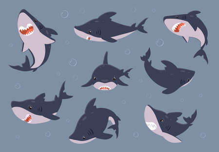 Cartoon shark. Sea fish swimming in water. Dangerous predator with open toothy mouth. Collection of underwater animal view from different sides. Attention warning sign template. Vector ocean fauna set