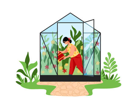 Woman works in garden. Cartoon young female watering plants in greenhouse. Agricultural worker grows natural vegetables in glass hothouse. Cute gardener takes care of flowers. Vector illustration 向量圖像