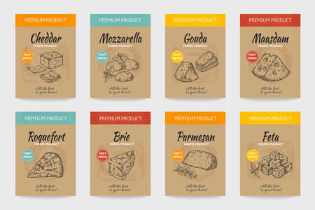 Cheese posters. Gourmet food vintage sketch. Organic cheesy snacks menu design. Farm dairy products package. Natural fresh edam and cheddar labels mockup. Vector cardboard stickers set Stock Illustratie