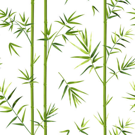 Bamboo pattern. Japanese seamless texture with vertical tree trunks and leaves. Chinese wallpaper template or decorative oriental textile. Vector Asian green plants background mockup