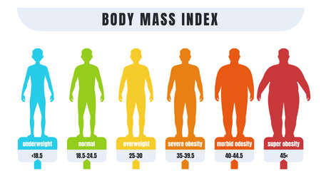 Man BMI. Body mass index infographics for male with normal weight and obesity. Fat and skinny silhouettes. Diagram for medical diagnostic. Vector underweight or adiposity diagnosis Vector Illustration