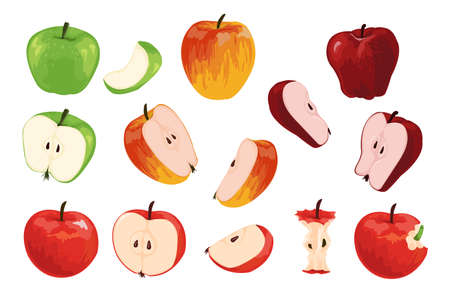 Apple. Cartoon half full and quarter of fruit with worm. Orchard vegetarian food collection. Ripe juicy vitamin plants for healthy nutrition. Vector organic green or red products set Ilustracja