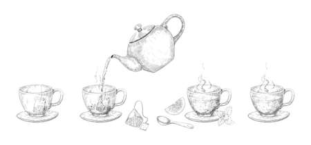 Tea brewing steps. Hand drawn stages of drink making with kettle and mug. Green and black teabags. Lemon and mink leaves. Pour water into cups from teapot. Vector tableware sketches set