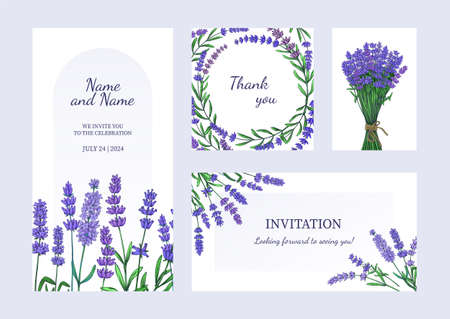 Lavender posters. Greeting card and invitation with bouquets of odorous garden flowers. Purple blooming plants. Celebration banners set with blossom herbs. Vector brochures and flyers