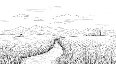 Hand drawn field landscape. Corn farm sketch with rural house and silos. Pencil drawing of agriculture area panorama. Truck with maize harvest. Vector summer and autumn engraving scene Ilustracja