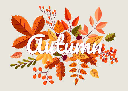 Autumn background. Fall composition with yellow orange and red forest leaves, maple oak and chestnut trees foliage. Cartoon autumn wallpaper, poster or card, vector isolated illustration
