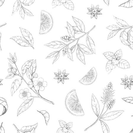 Tea leaf pattern. Seamless texture of green and black morning drink. Hand drawn engraving of branches with flowers. Anise and lemon piece sketch. Fresh foliage. Vector print template Illustration