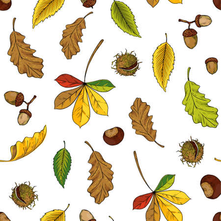 Autumn leaves pattern. Seamless texture with yellow oak and maple foliage. Red and orange chestnut twigs. Forest acorns. Decorative fall season herbarium background. Vector nature print