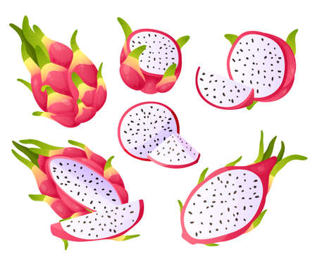 Dragon fruit. Cartoon pitaya pieces. Sweet exotic products. Half and whole pitahaya. Healthy organic dessert ingredients. Delicious juicy food. Vector isolated tropical Asian plants set Illustration